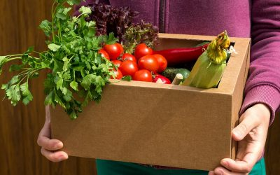 A video showcase of how community food enterprises work