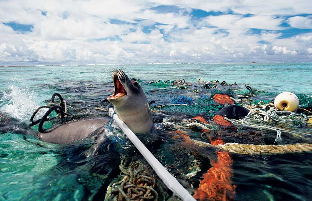 How possible is plastic free?