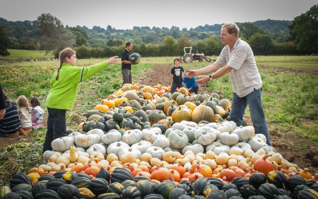 How Food Producers can inspire the next generation