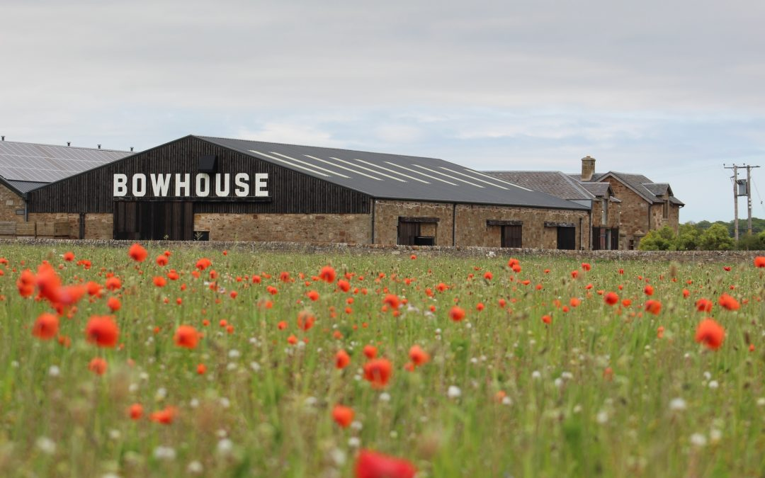 Business Model Blog: Bowhouse Link